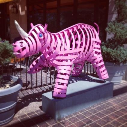 Pink rhino!