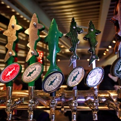Seven Taps Dogfish