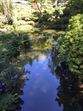 Feeling reflective in the Japanese Garden