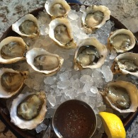 Shuck, slurp, repeat!