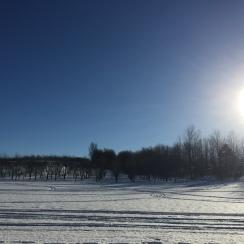 Pure Michigan brisk air